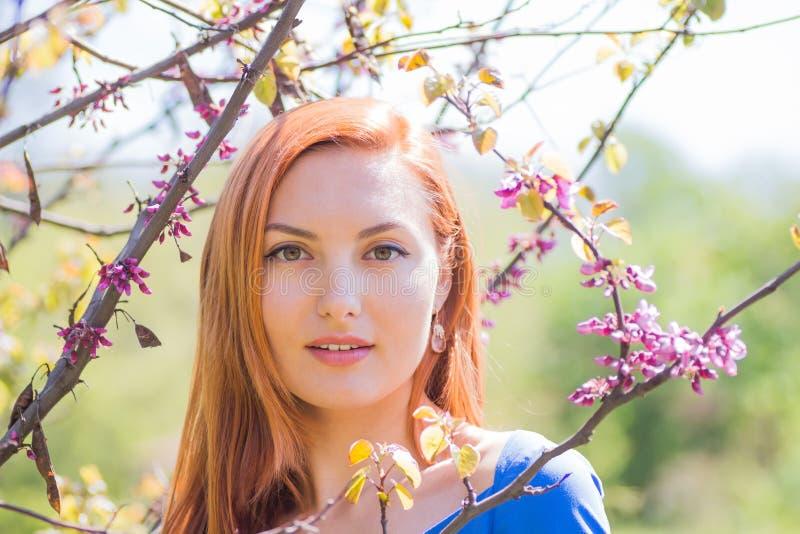 Muchacha pelirroja joven hermosa en vestido azul entre flowe de la primavera fotografía de archivo