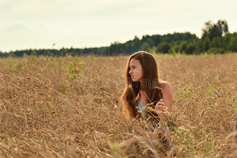 Muchacha pensativa con una mirada seria entre las espiguillas en un campo de trigo en el sol poniente imagen de archivo libre de regalías