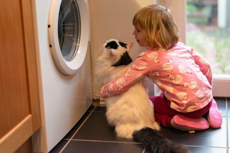 Muchacha que abraza el gato en cocina imagen de archivo