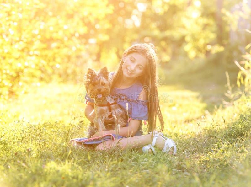 Muchacha que abraza el perro del terrier de Yorkshire en el parque fotografía de archivo libre de regalías
