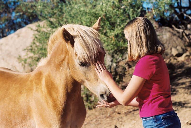 Muchacha que acaricia el caballo imagenes de archivo