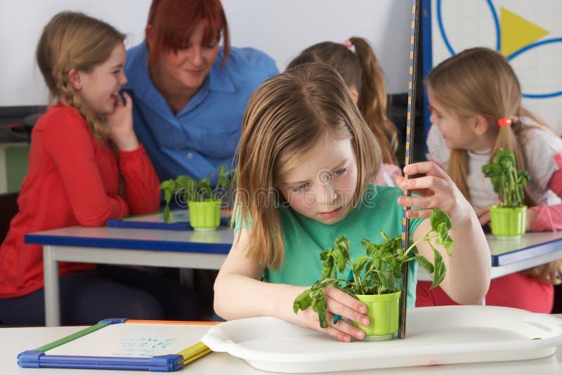 Muchacha que aprende sobre las plantas en clase de escuela imagen de archivo libre de regalías