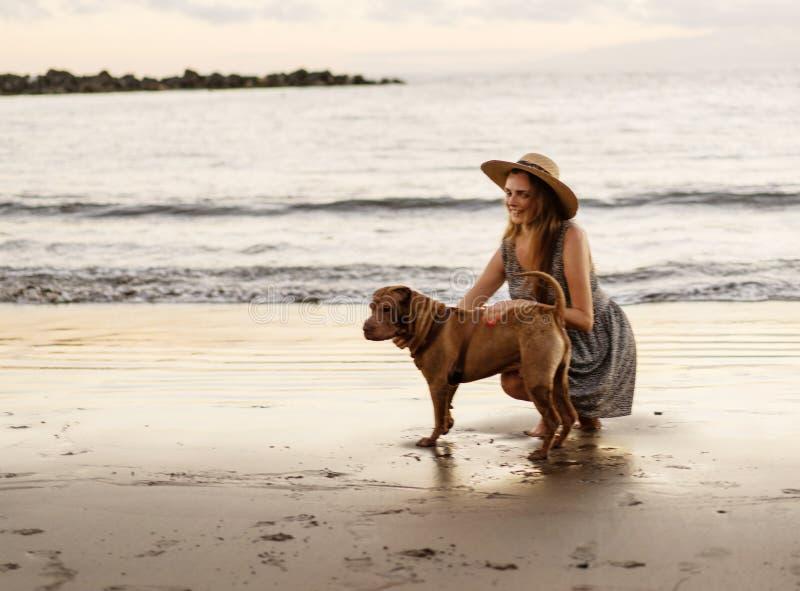 Muchacha que camina en la playa en la puesta del sol con un perro imagen de archivo libre de regalías