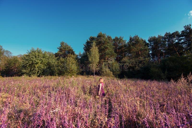 Muchacha que camina solamente en un campo de flor imagen de archivo libre de regalías
