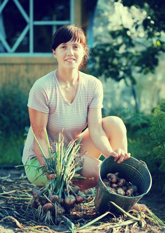 Muchacha que cosecha la cebolla imágenes de archivo libres de regalías
