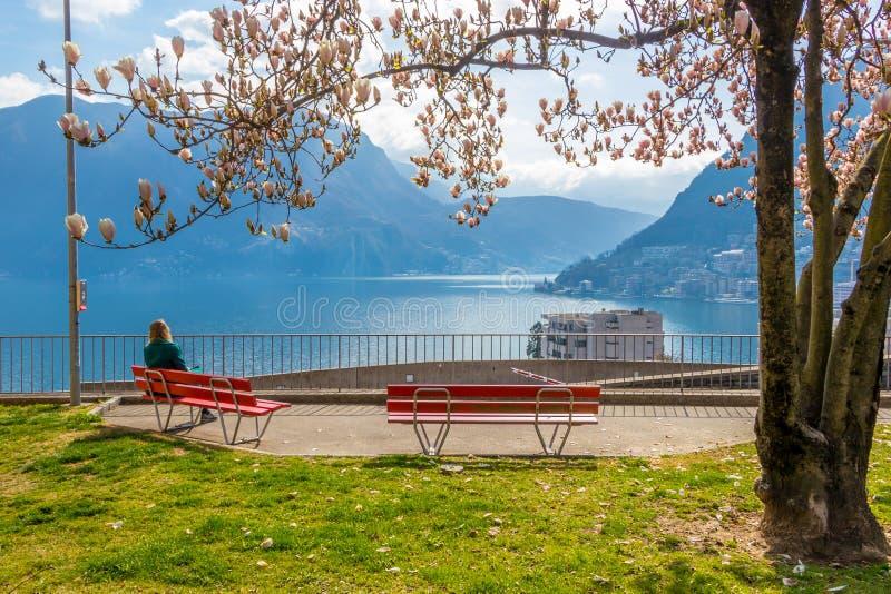 Muchacha que disfruta de la opinión de la ciudad de un banco debajo del árbol de la magnolia en la colina en Lugano foto de archivo libre de regalías