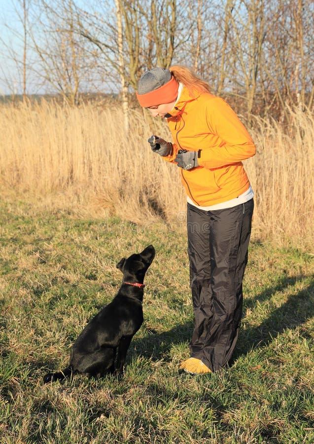 Muchacha que entrena al perro negro imagenes de archivo