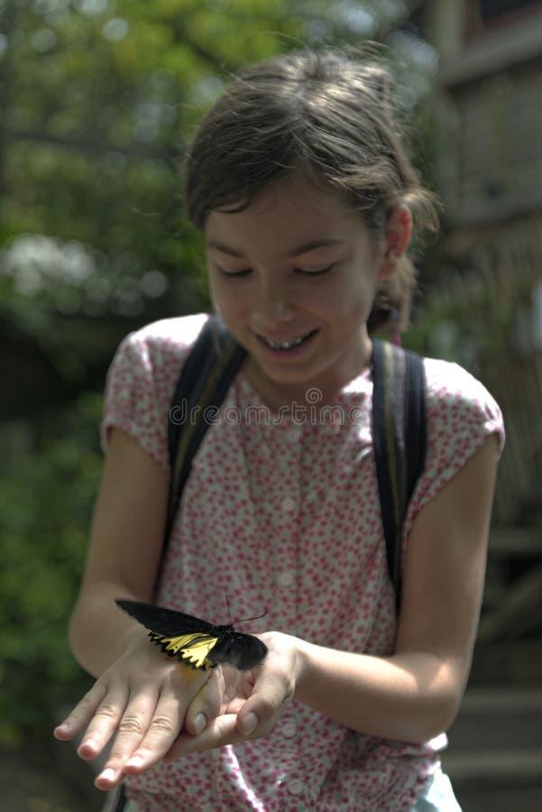 Muchacha que estudia la mariposa grande imagenes de archivo
