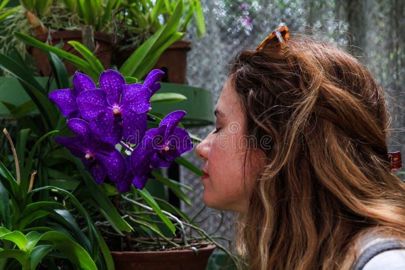 Muchacha que huele las flores púrpuras fotos de archivo libres de regalías