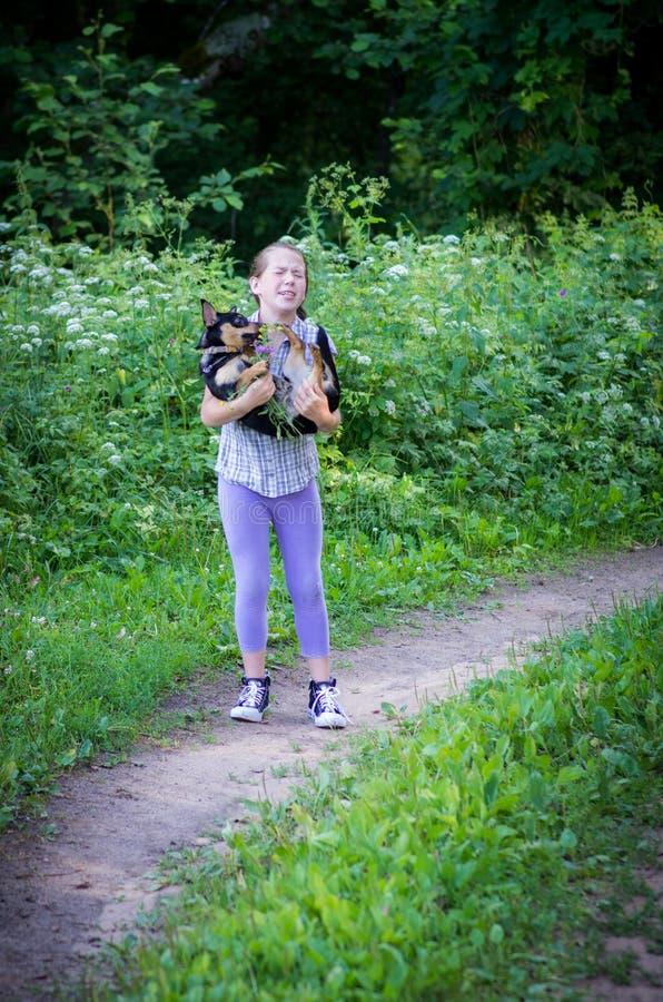Muchacha que juega con el perro al aire libre fotografía de archivo