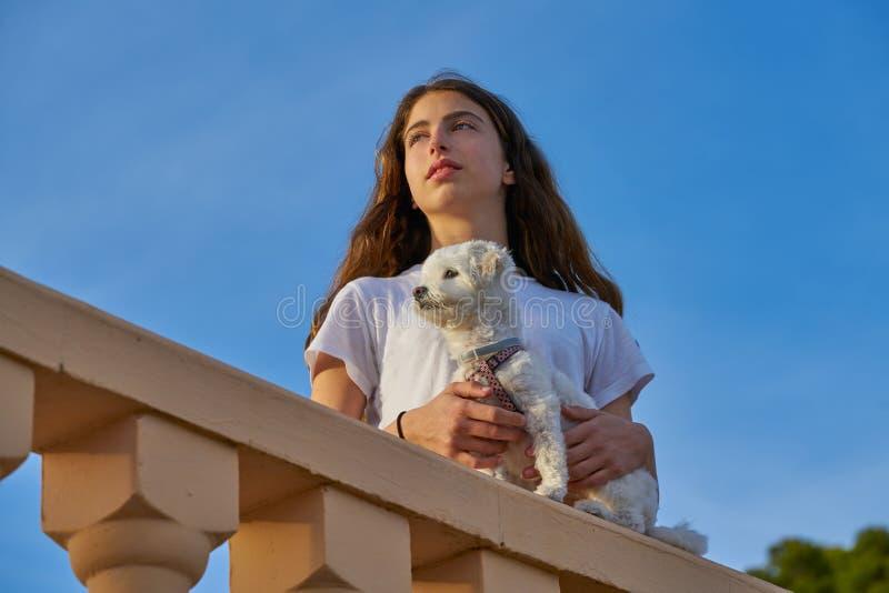 Muchacha que juega con el perro del maltichon en un balconade foto de archivo libre de regalías