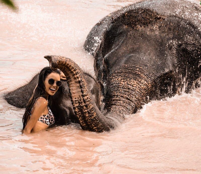 Muchacha que lava un elefante foto de archivo