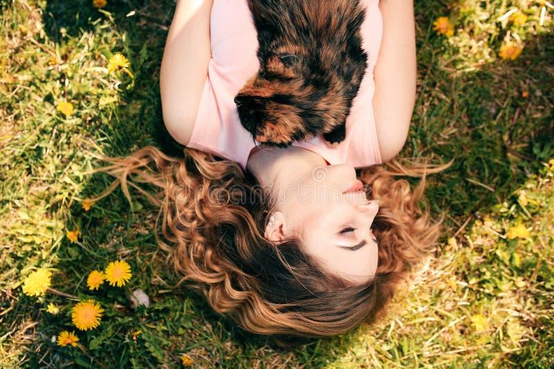 Muchacha que miente en hierba con el gato en concepto caliente de la primavera del pecho o del tiempo del verano Fondo de Bokeh G imagenes de archivo