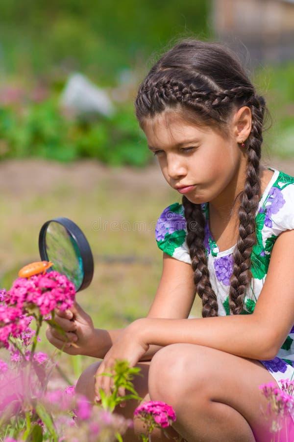 Muchacha que mira a través de la lupa en la flor imágenes de archivo libres de regalías