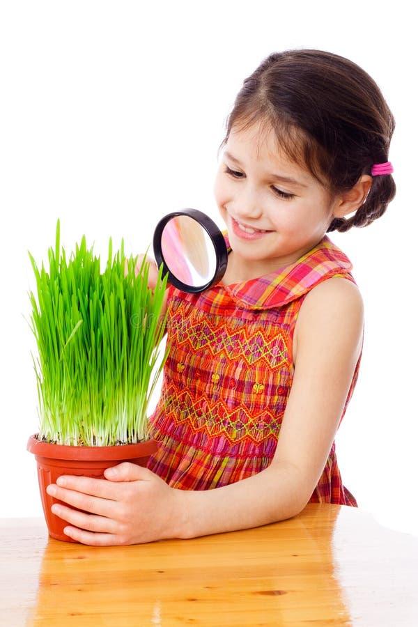 Muchacha que mira a través de una lupa fotografía de archivo