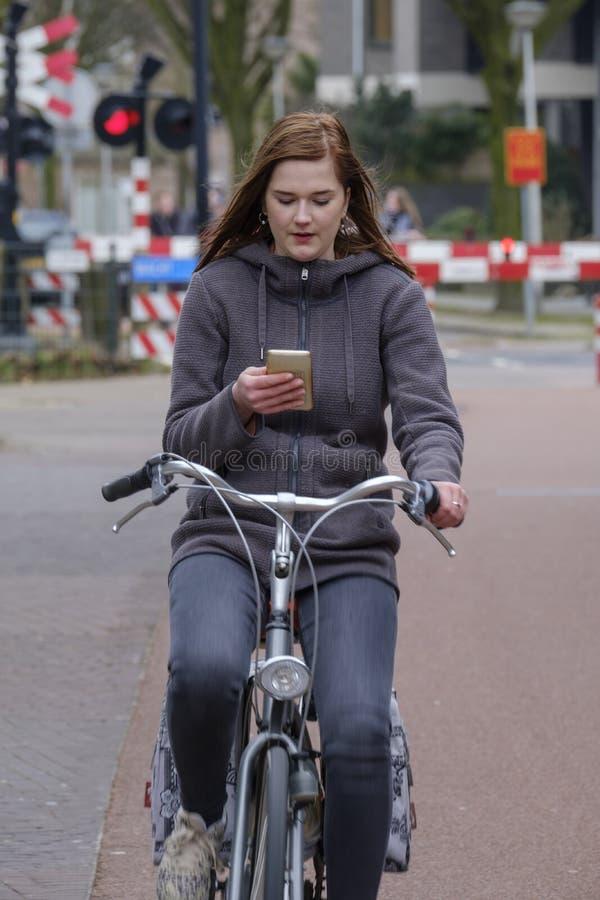 Muchacha que monta una bici y miradas en su smartphone, peligro foto de archivo