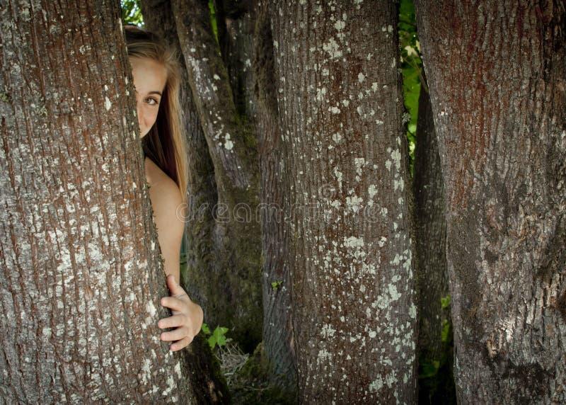 Muchacha Que Oculta Detrás De Un árbol Imágenes de archivo libres de regalías