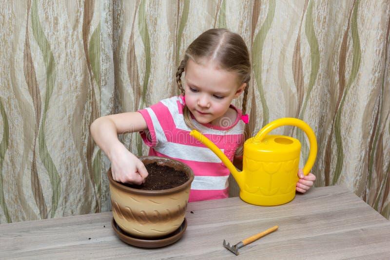 Muchacha que planta las semillas en un pote en la tabla imagen de archivo libre de regalías