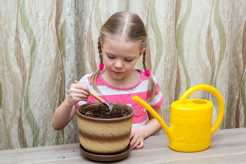 Muchacha que planta las semillas en un pote en la tabla foto de archivo libre de regalías