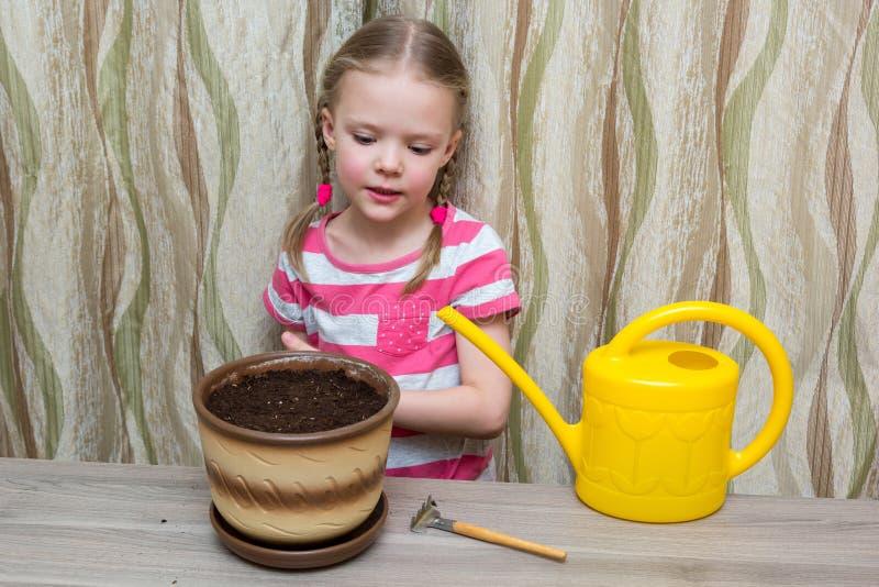 Muchacha que planta las semillas en un pote en la tabla imágenes de archivo libres de regalías