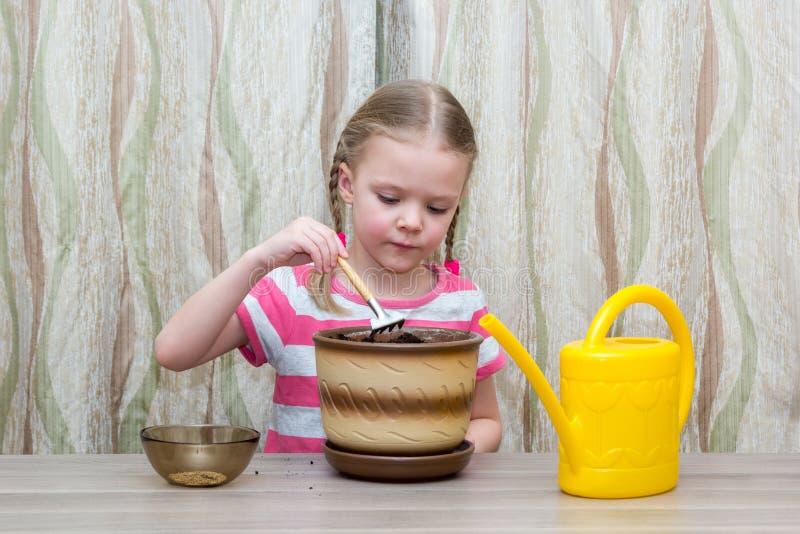 Muchacha que planta las semillas en un pote en la tabla fotos de archivo libres de regalías