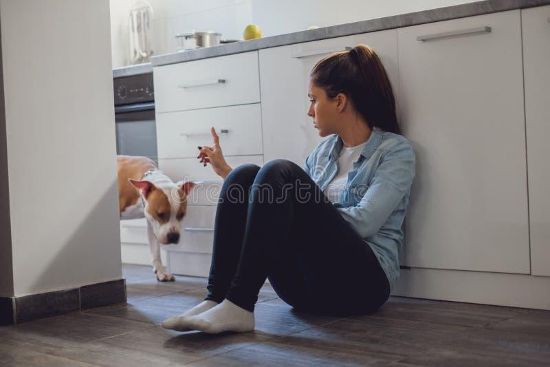 Muchacha que regaña su perro en la cocina fotos de archivo