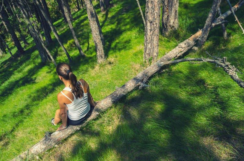 Muchacha que se sienta en el árbol caido profundamente en bosque en día de primavera soleado foto de archivo libre de regalías