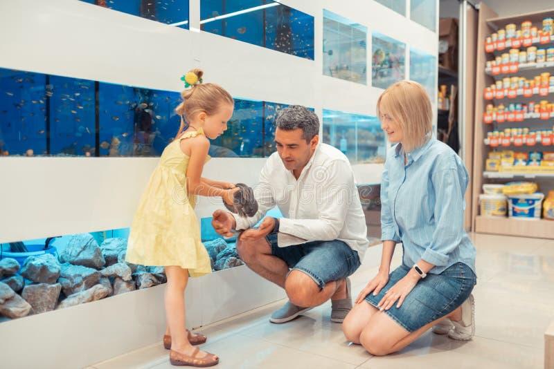 Muchacha que sostiene el conejo mientras que visita la tienda de animales con los padres foto de archivo libre de regalías