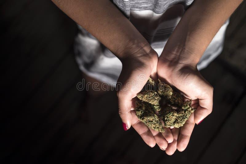 Muchacha que sostiene los brotes de la marijuana imagen de archivo