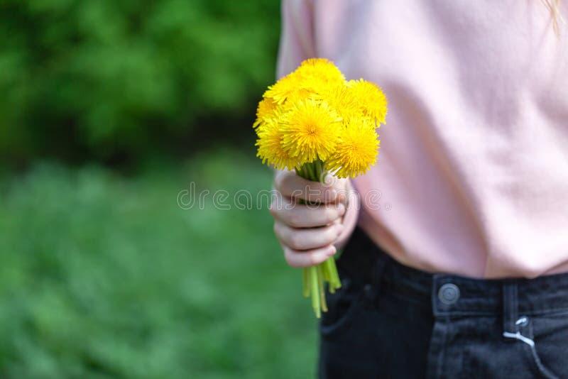 Muchacha que sostiene un diente de león floreciente en manos fotos de archivo libres de regalías