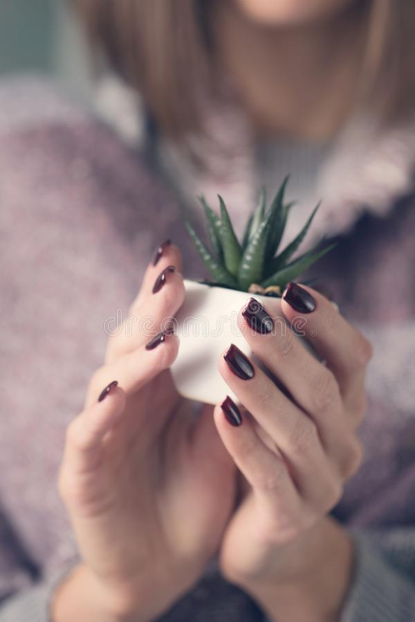 Muchacha que sostiene un pote con una flor foto de archivo libre de regalías
