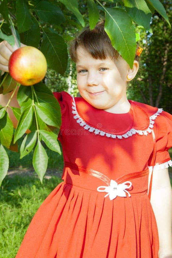 Muchacha que sostiene una manzana foto de archivo libre de regalías