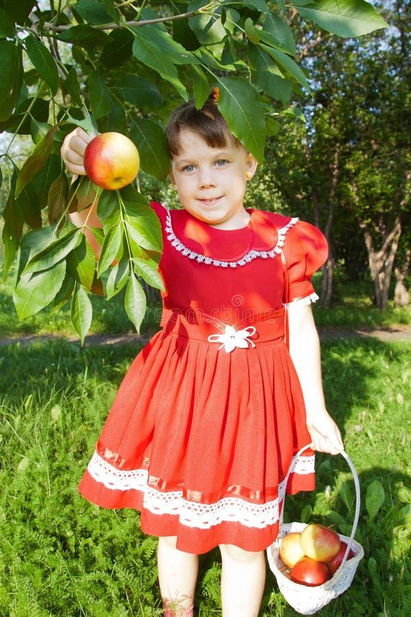 Muchacha que sostiene una manzana imagenes de archivo
