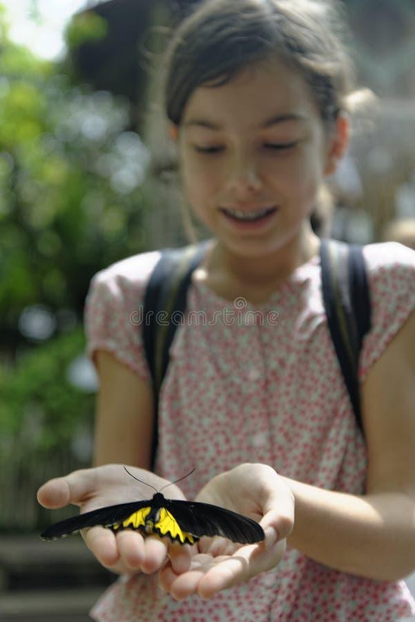 Muchacha que sostiene una mariposa fotos de archivo libres de regalías