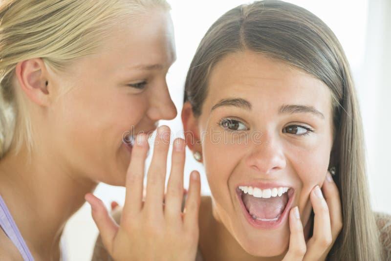 Muchacha que susurra en el oído del amigo chocado fotos de archivo libres de regalías