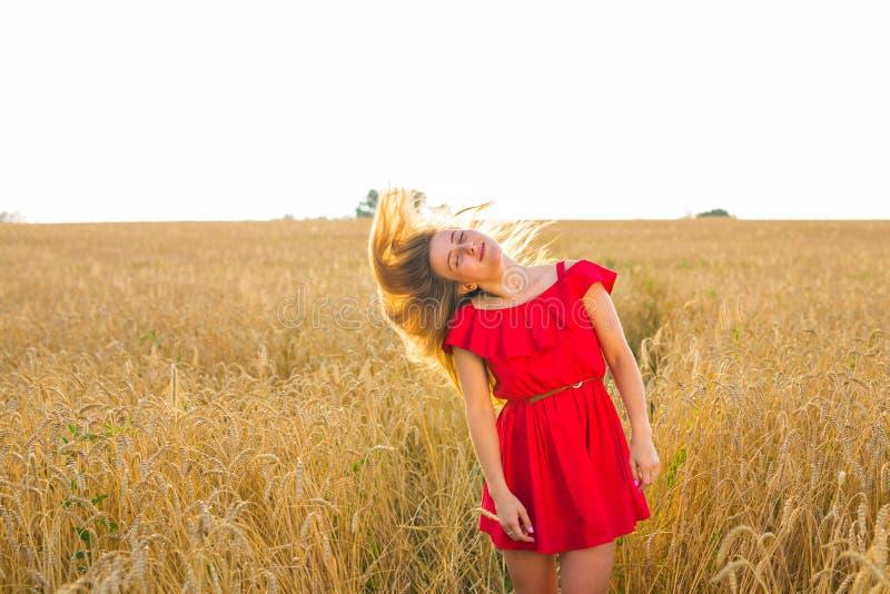 Muchacha romántica magnífica al aire libre Modelo hermoso en vestido rojo corto en campo Pelo largo que sopla en el viento Retroi fotos de archivo