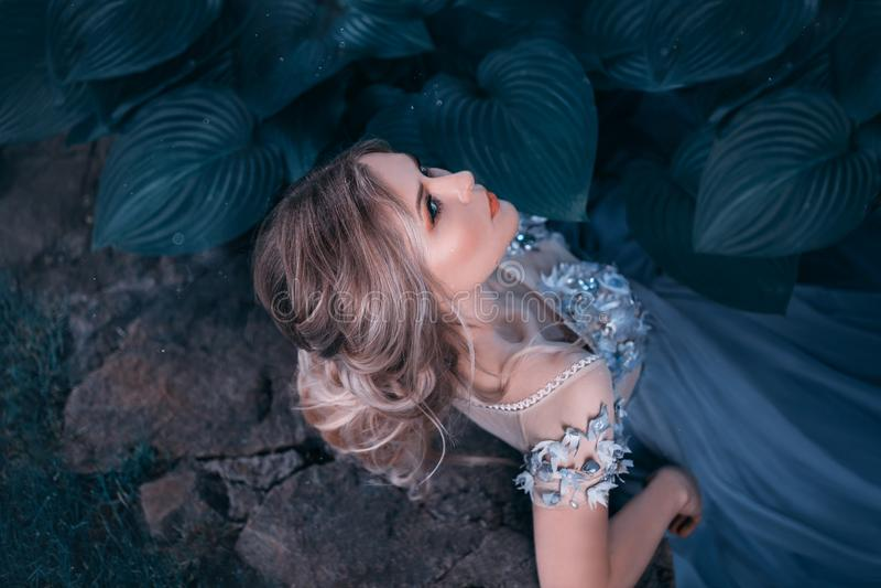 Muchacha rubia, con un peinado recolectado hermoso El pelo rosado no es largo Vestido inusual gris-azul de la princesa Retrato en imagen de archivo libre de regalías