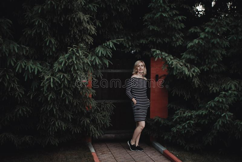 Muchacha rubia interesante elegante en un vestido rayado en una cerca de madera y un seto grueso de abetos Aqu? y ahora imagenes de archivo