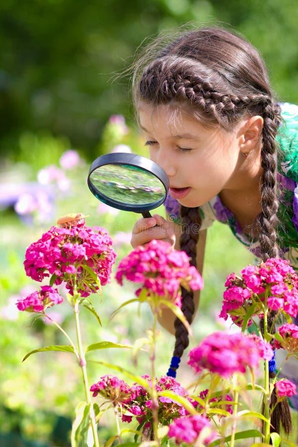 Muchacha sorprendida que mira a través de la lupa en escarabajo foto de archivo libre de regalías