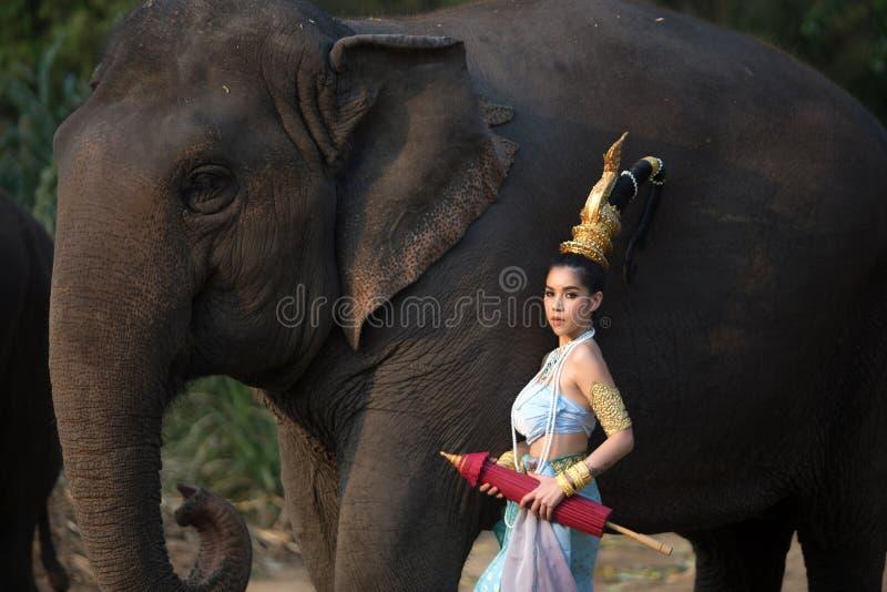 Muchacha tailandesa con el elefante foto de archivo