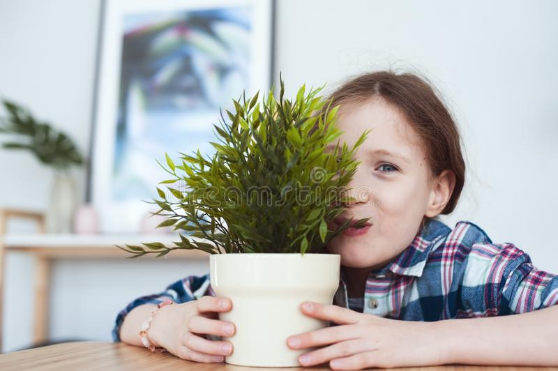 muchacha traviesa divertida del niño que bromea y que come la planta falsa de la casa fotos de archivo