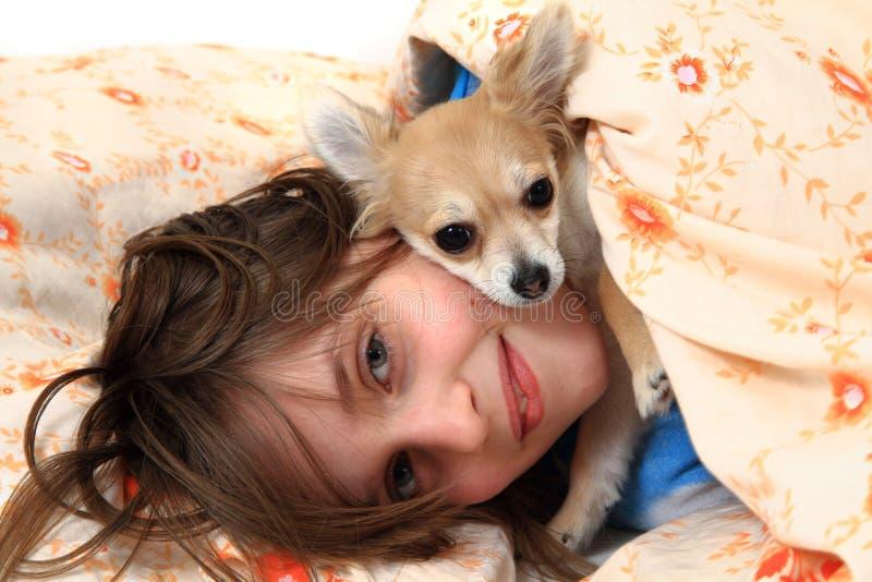 Muchacha y chihuahua en la cama foto de archivo