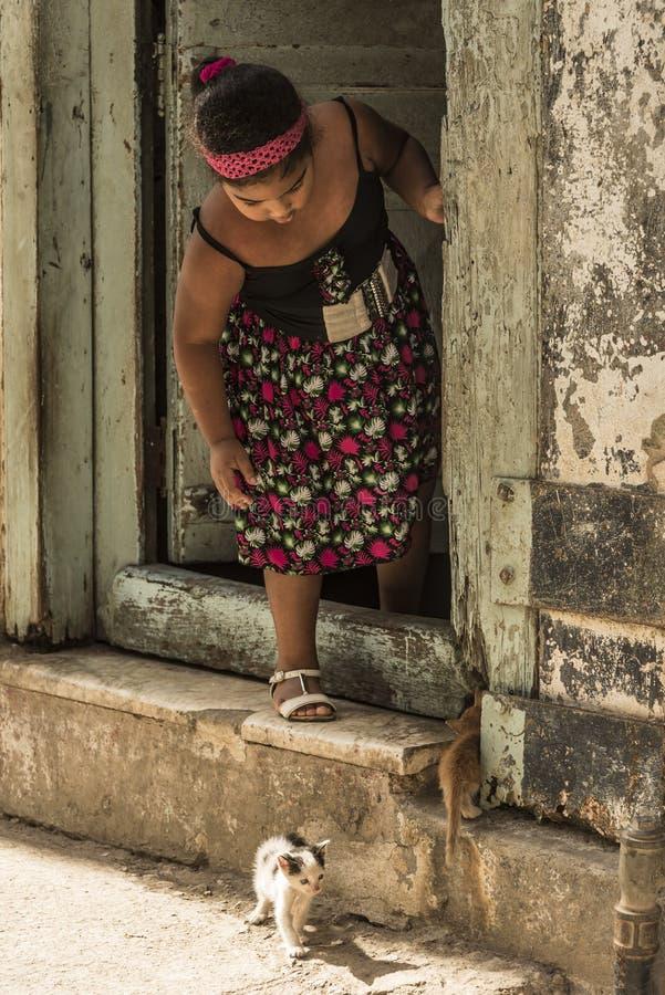 Muchacha y gatitos La Habana fotos de archivo libres de regalías