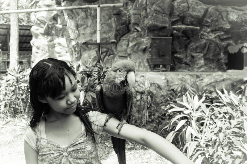Muchacha y Macaw foto de archivo