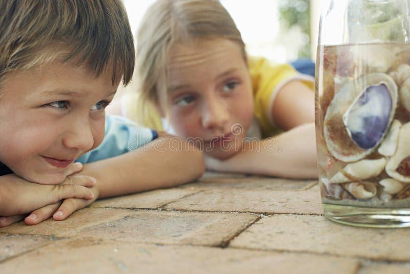 Muchacha y muchacho que miran conchas marinas en botella imagen de archivo