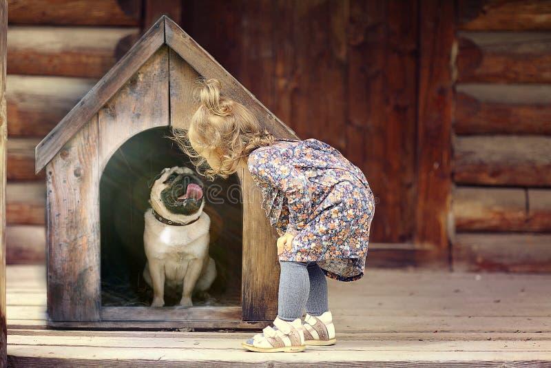 Muchacha y pequeño perro imagen de archivo libre de regalías