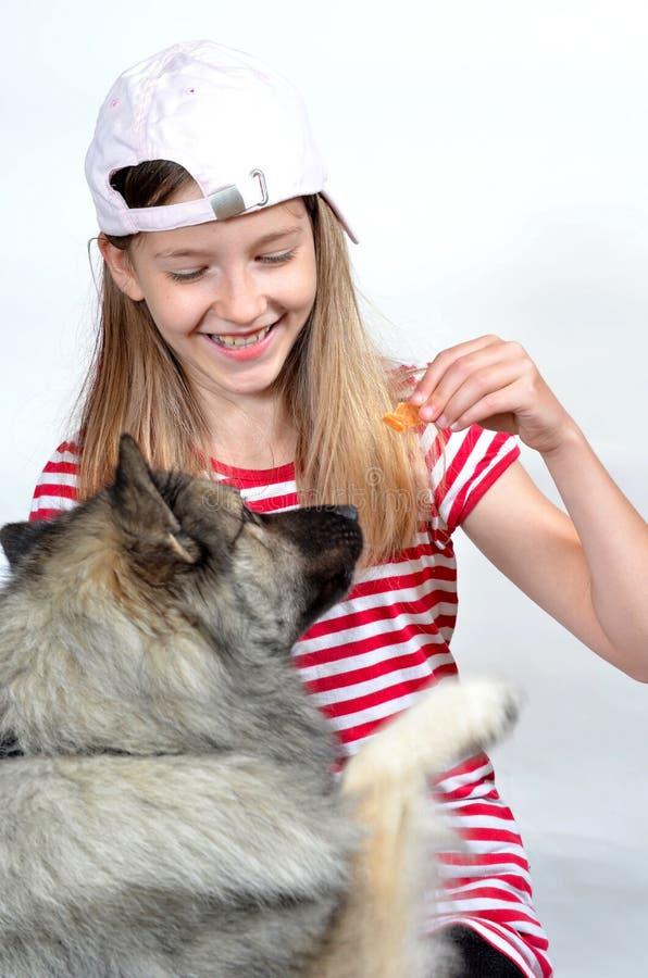 Muchacha y perro divertidos imágenes de archivo libres de regalías