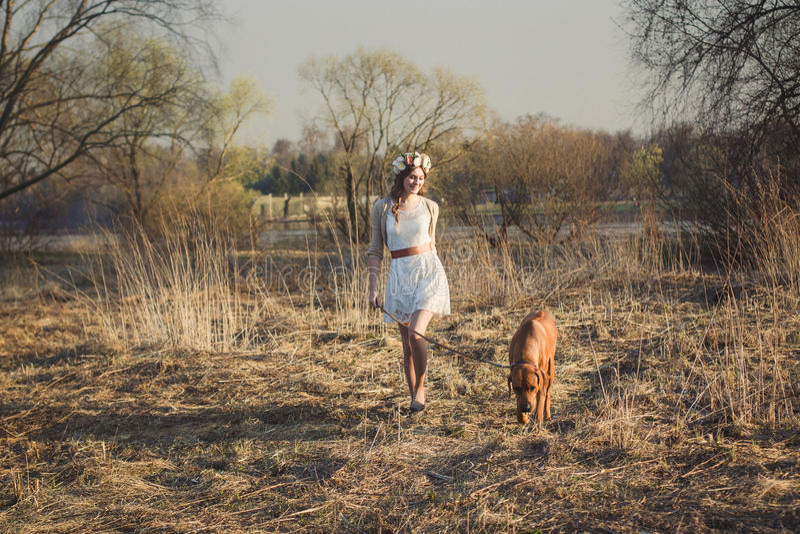Muchacha y perro marrón imagenes de archivo
