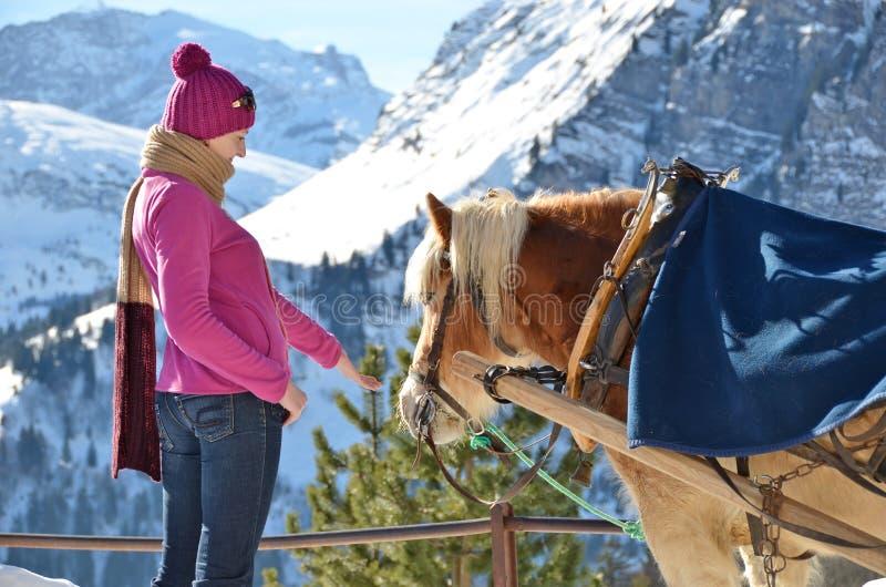 Muchacha y un caballo foto de archivo libre de regalías