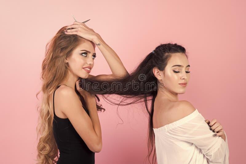 Muchachas con el pelo largo Las muchachas hacen el corte de pelo, relaciones del amor, amistad imagen de archivo